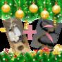 Kerstpakket-2019-GJ-Cosmetics-Give-A-Way
